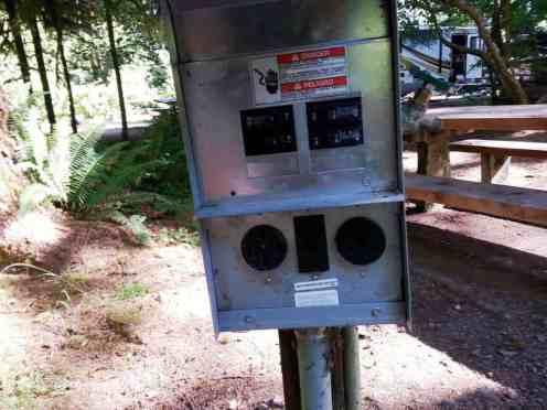 Bogachiel-State-Park-Campground-18