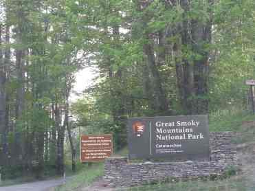 Cataloochee Campground in Great Smoky Mountains National Park near Waynesville North Carolina1