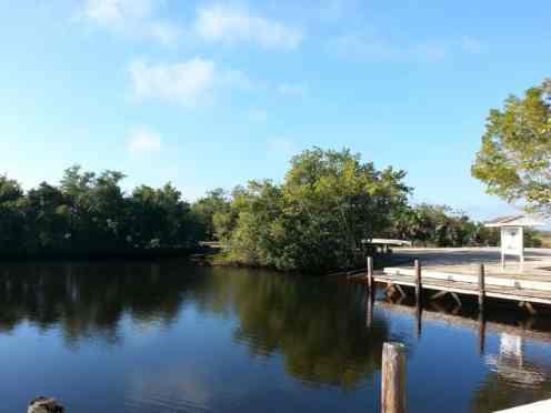 Collier-Seminole State Park in Naples Florida8