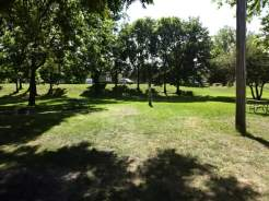 Deerwood grassy site