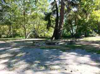 Dosewallips-State-Park-Campground-02