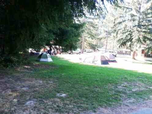 Dosewallips-State-Park-Campground-11