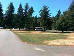 Dosewallips-State-Park-Campground-16