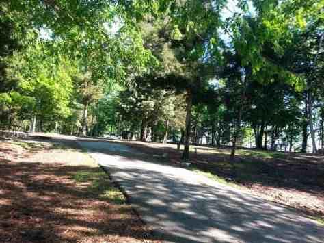 Dreher Island State Park in Prosperity South Carolina2