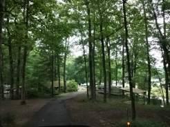 Flaming Arrow road in woods