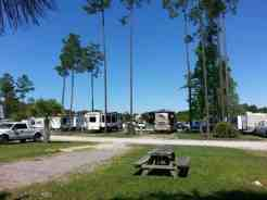 Flamingo Lake RV Resort in Jacksonville Florida30