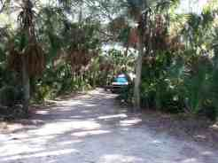 Fort De Soto Park in (Tierra Verde) Saint Petersburg Florida07