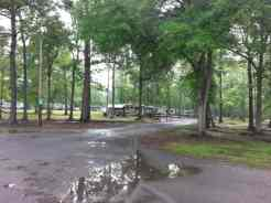 Hardeeville RV – Thomas Parks & Sites in Hardeeville South Carolina 4