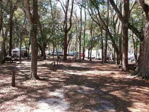 Highlands Hammock State Park in Sebring Florida2