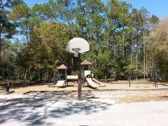 Highlands Hammock State Park in Sebring Florida4