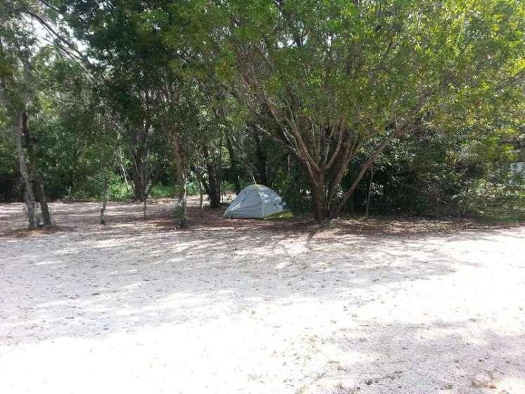 John Pennekamp Coral Reef State Park in Key Largo Florida 5
