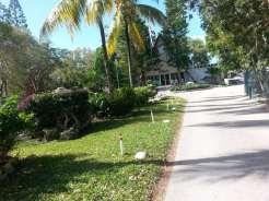 Key Largo Kampground & Marina in Key Largo Florida7