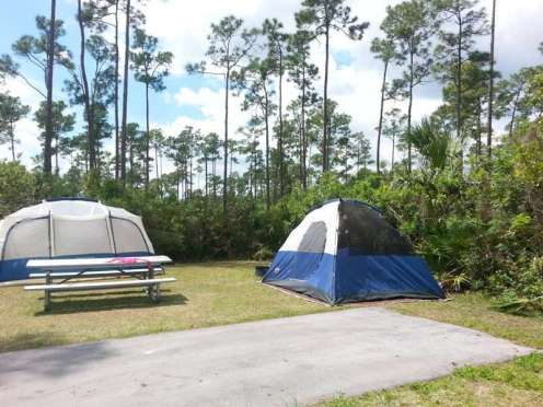 Long Pine Key Campground in Everglades National Park3