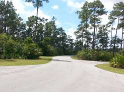 Long Pine Key Campground in Everglades National Park4