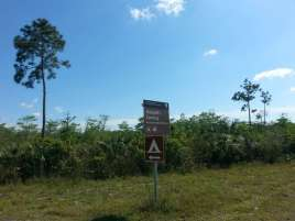 Mitchell's Landing Campground in Big Cypress National Preserve1