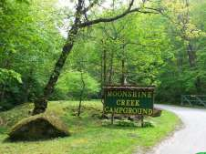 Moonshine Creek Campground in Sylva North Carolina01