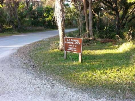 Myakka River State Park Old Prairie Campground in Sarasota Florida1