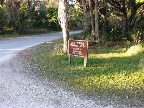 Myakka River State Park Old Prairie Campground in Sarasota Florida1