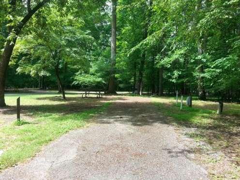Newport News Park Campground in Newport News Virginia3