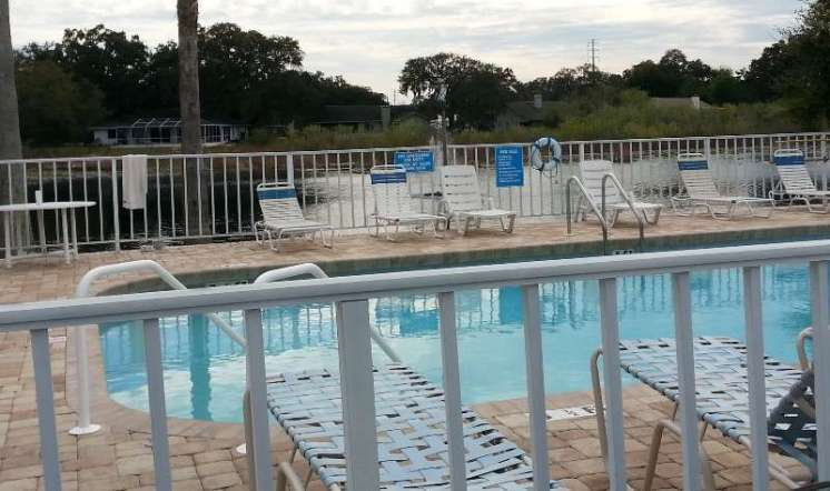 Orchid Lake Rv Resort in New Port Richey Florida4