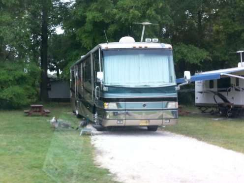 Red Gate Campground & RV Resort in Savannah Georgia3