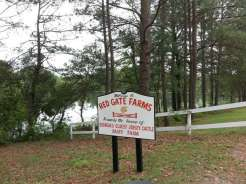 Red Gate Campground & RV Resort in Savannah Georgia4