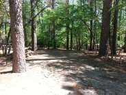 Sesquicentennial State Park in Columbia South Carolina6