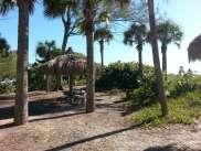 Turtle Beach Campground, located on Siesta Key Florida7