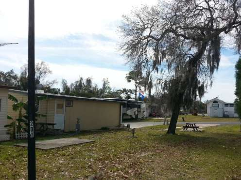 Winter Paradise in Hudson Florida5
