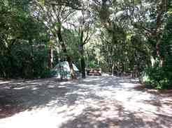 Anastasia State Park in St. Augustine Florida Tent Site