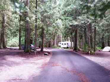 avalanche-campground-glacier-national-park-09
