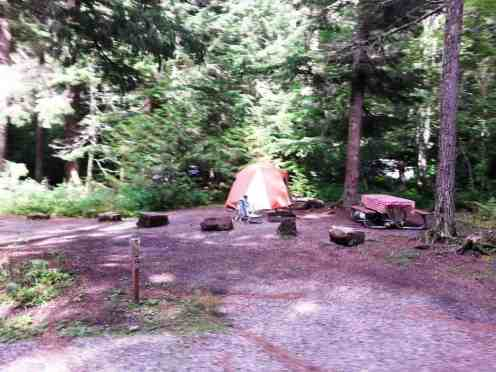 avalanche-campground-glacier-national-park-10