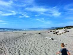 barview-jetty-campground-or-08