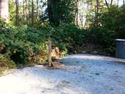 bay-view-state-park-campground-wa-16