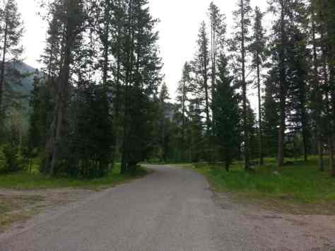 beaver-creek-campground-road-2