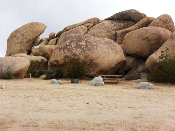 belle-campground-joshua-tree-national-park-02