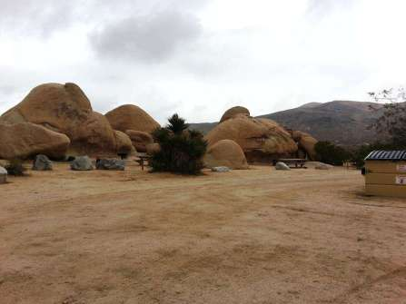 belle-campground-joshua-tree-national-park-03