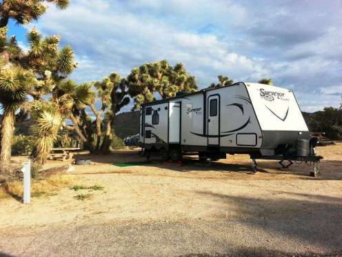 blackrock-campground-joshua-tree-national-park-3