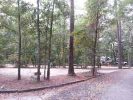 Blythe Island Regional Park in Brunswick Georgia Backin SIte