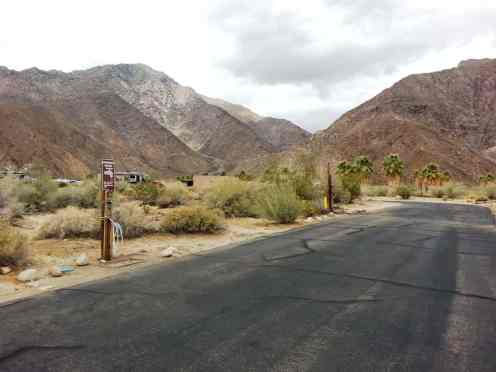 borrego-palm-canyon-state-park-campground-7