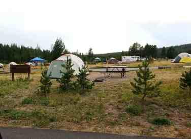bridge-bay-campground-yellowstone-national-park-07