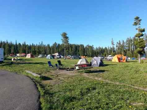 bridge-bay-campground-yellowstone-national-park-crowded
