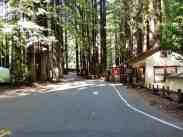 burlington-campground-humboldt-redwoods-state-park-02