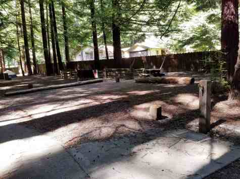 burlington-campground-humboldt-redwoods-state-park-06