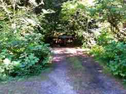 colonial-creek-campground-north-cascade-national-park-07