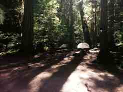 colonial-creek-campground-north-cascade-national-park-10