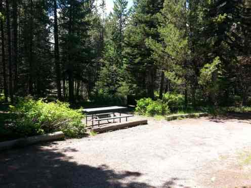 colter-bay-campground-rv-park-grand-teton-national-park-4