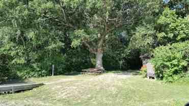 comlara-park-evergreen-lake-campground-20