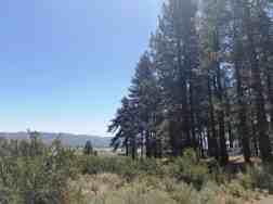 davis-creek-county-park-campground-14