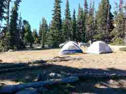 deer-park-campground-olympic-national-park-12